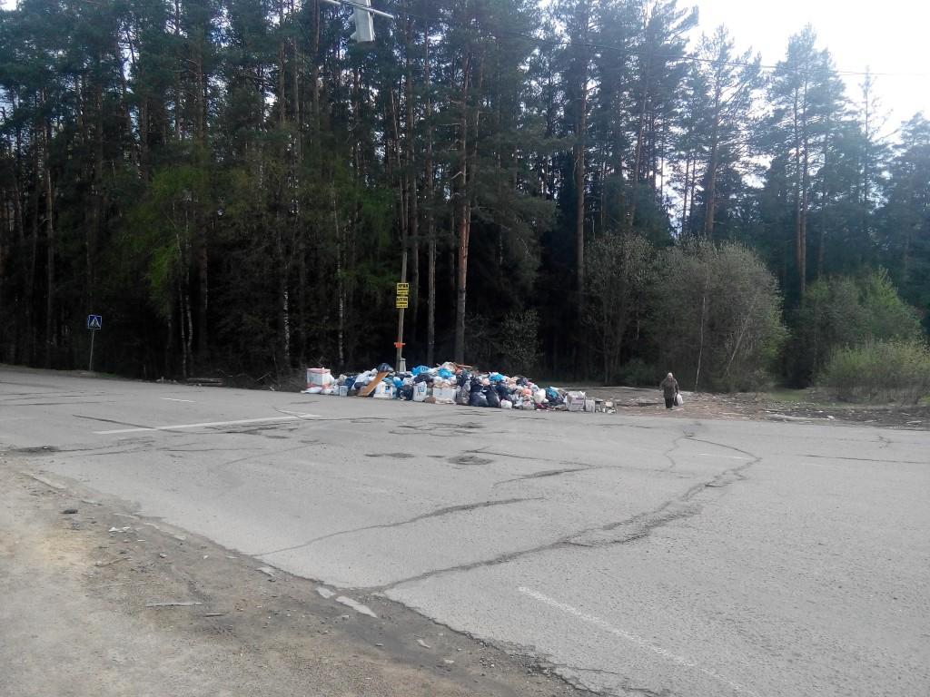 Свалка мусора в Литвиново