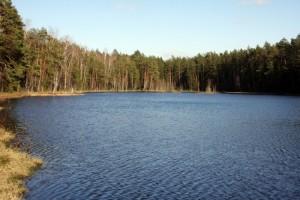 Экологические места Щелковского района