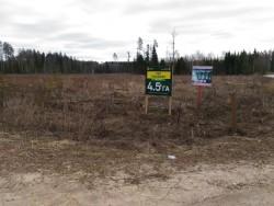Вырубка леса в Щелковском районе